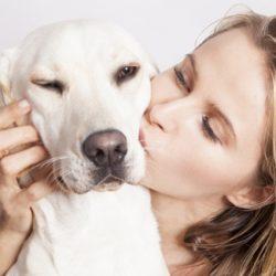 11 dolog, amit ki nem állhat a kutyád