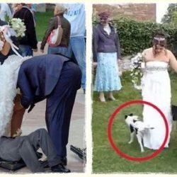 15 döbbenetes esküvői baki, amit nem bírsz ki nevetés nélkül