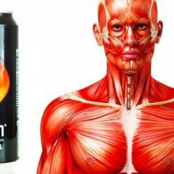Az energiaital 8 ijesztő hatása a testeden