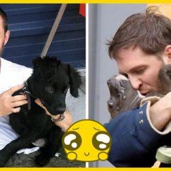 10 fotó bizonyítja, hogy Tom Hardy a világ legnagyobb kutyabarátja