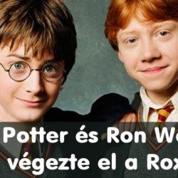 18 megdöbbentő tény a Harry Potterről, ami még a legnagyobb fanatikusokat is képes sokkolni